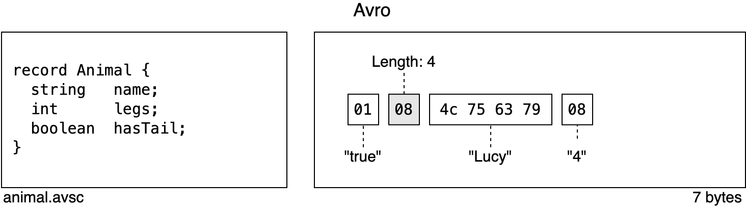 A serialized Avro record and its associated schema to demonstrate the use of tags